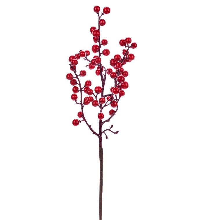 Red Spike Berry Spray