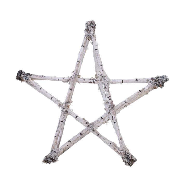 Large Birch Star Ornament