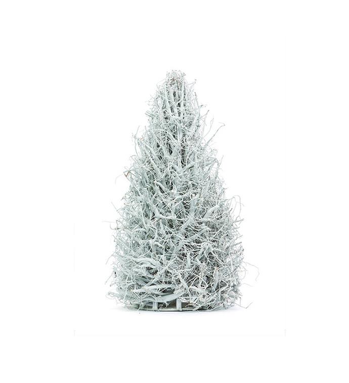 White Wash Wood Tree