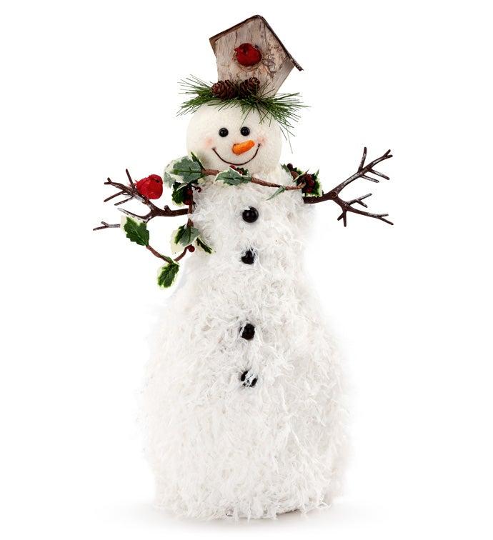 Snowman with Cardinal/Bird House