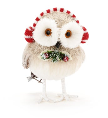 Owl with Ear Muffs