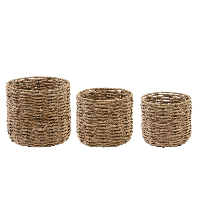 Seagrass Tree Cover, Set of 3