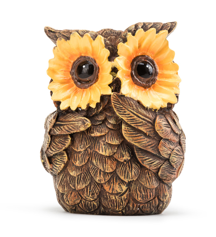 Owl with Sunflower Eyes
