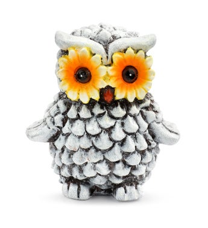 Sunflower Owl