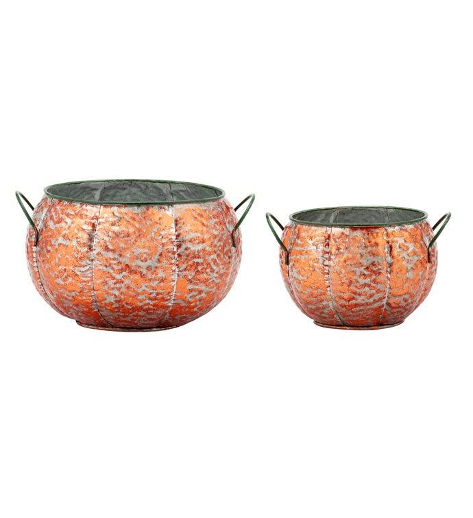 Pumpkin Dish Garden, Set of 2