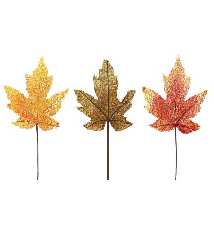 Pumpkin Spice Maple Leaves