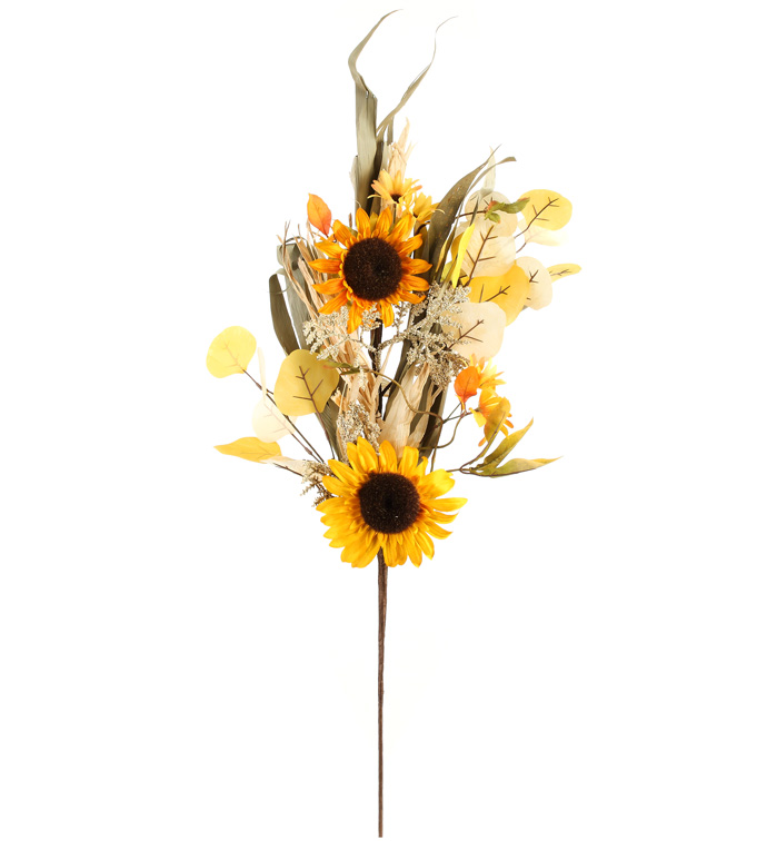 Dried Sunflower Spray