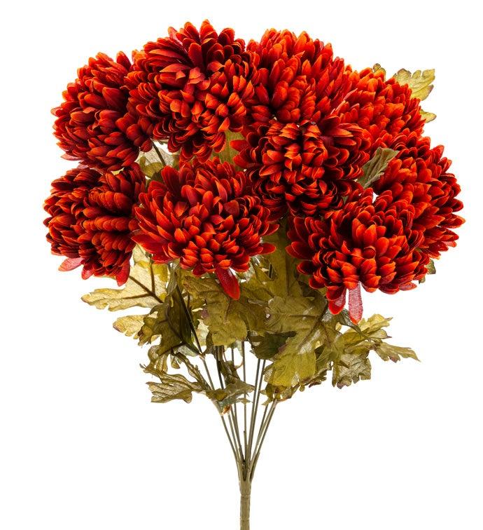 Rust Chrysanthemum Bush