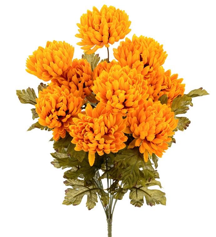 Gold Chrysanthemum Bush