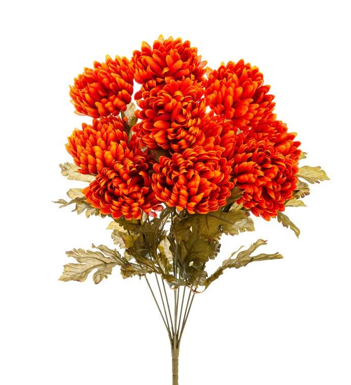 Orange Chrysanthemum Bush
