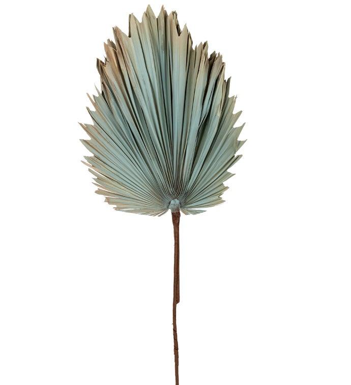 Grey Dried Fan Palm Spray