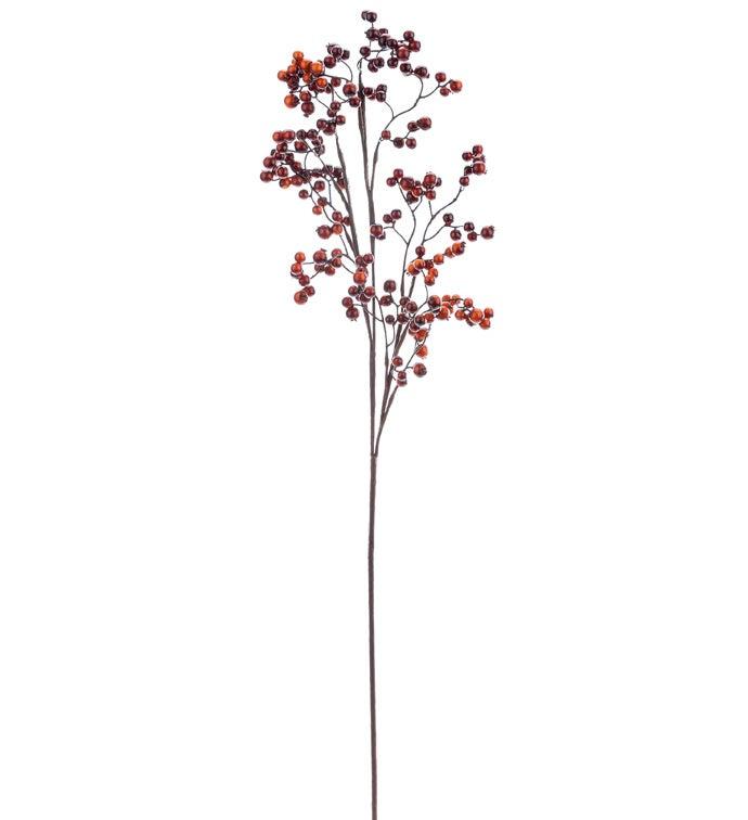 Chestnut Berry Branch