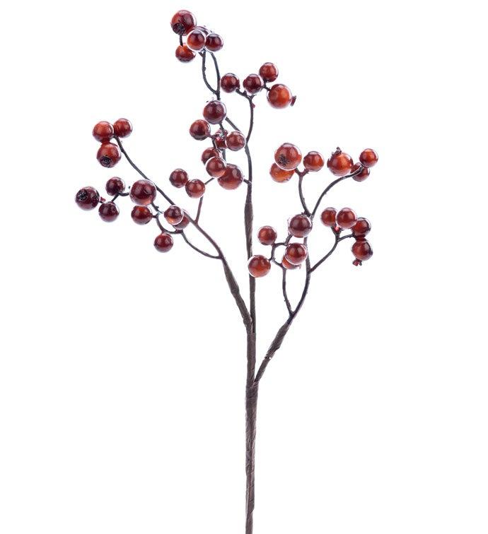 Chestnut Berry Pick