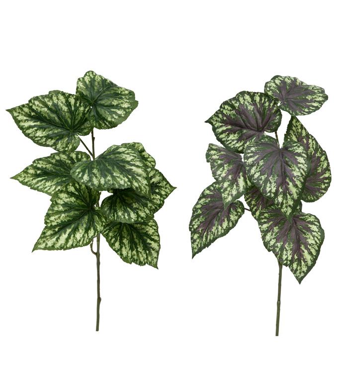 Begonia Leaf Spray, 2 Assorted