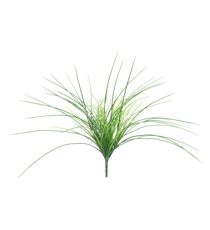Two Tone Grass Bush