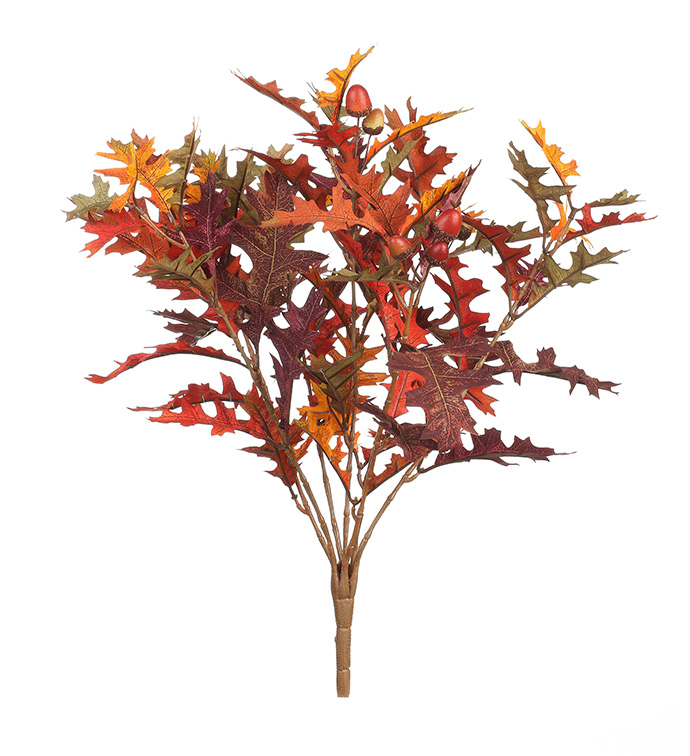Oak Leaf Bush Flame