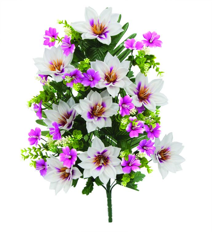 Lotus Blossom Half Bush
