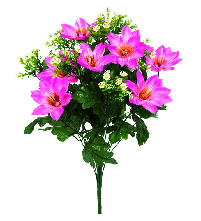 """21"""" Pink Lotus Bush"""