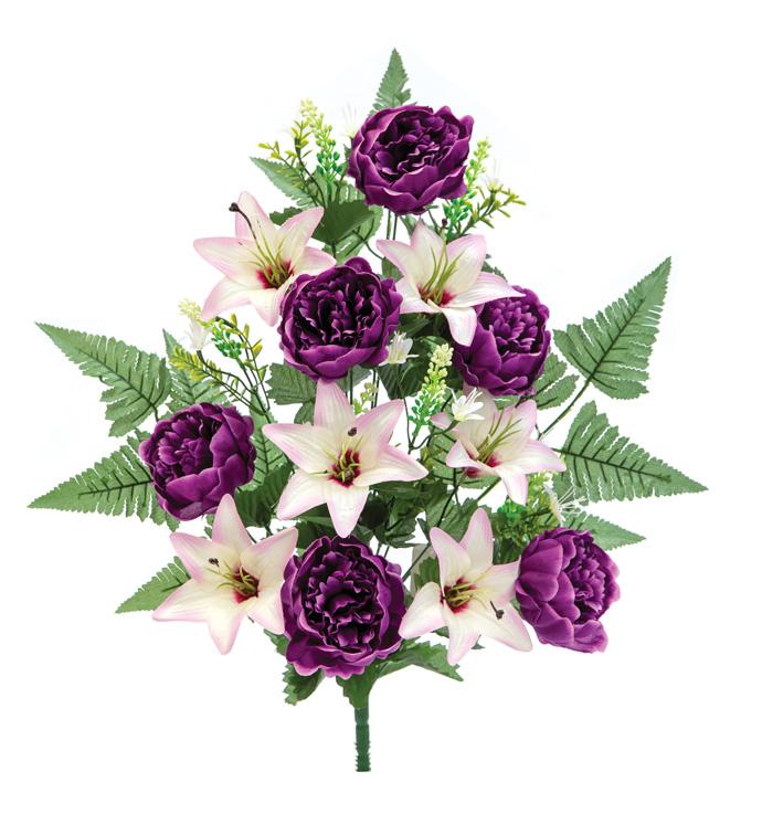 Purple Peony Bush