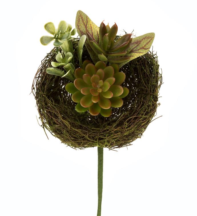 Succulent/Nest Pick